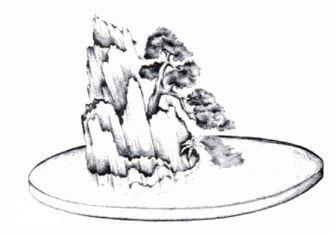 فرم بونسای ریشه در سنگ