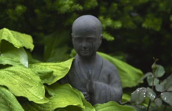 ذن بودا