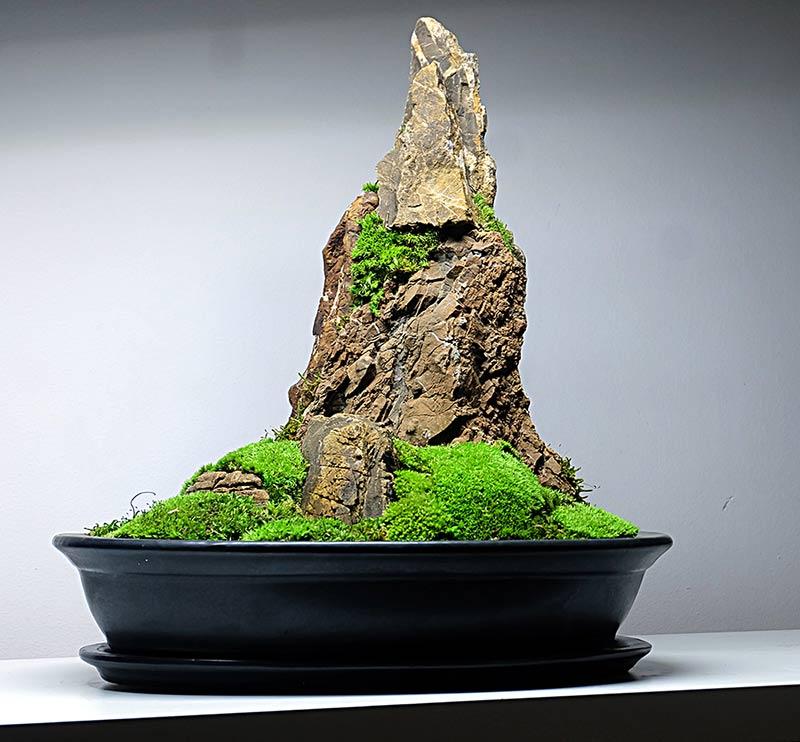 Koke Bonkei
